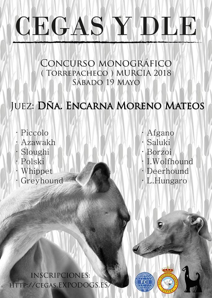 Concurso Monografico