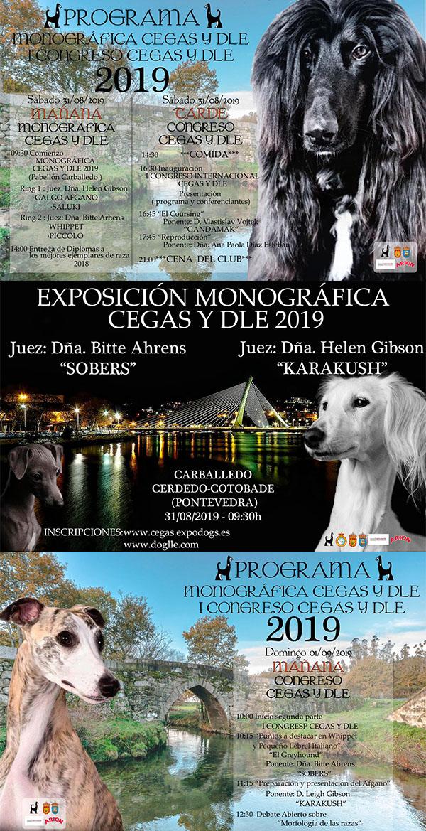 Exposición Monográfica - Especializada de España 2019